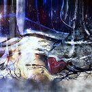 Winter Dream by Linda Sannuti