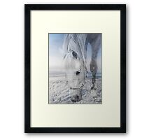 Beauty Up Above   Framed Print