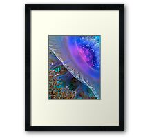 Crown Jellyfish Close Up Framed Print