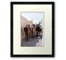 Mule Train Framed Print