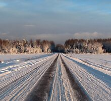 A Winter Road by Irina777