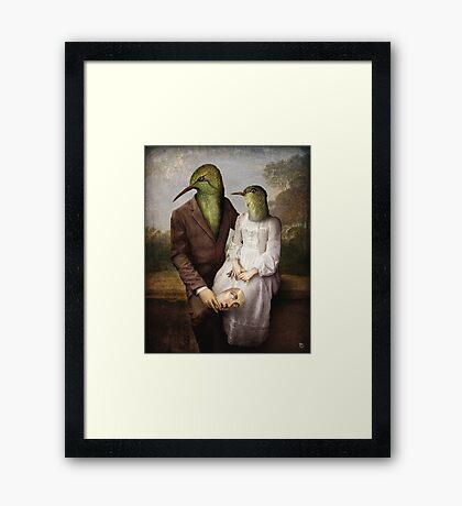 The Hummingbirds Framed Print