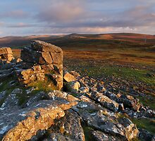 First Light - Dartmoor National Park by garykingphoto