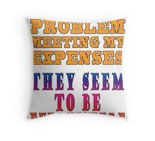 Meeting One's Expenses Throw Pillow