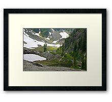 trail in heather meadows, wa, usa Framed Print