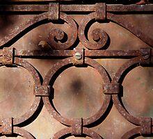 Rusty Circles by teresalynwillis