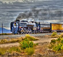 Union Pacific #844 Steam by J. Michael Runyon