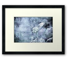 Miraculous Winter Framed Print
