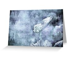 Miraculous Winter Greeting Card