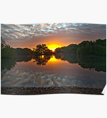 Epping Forest Sunrise Poster