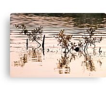 Submerged Branches Canvas Print