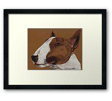 Bull Terrier Vignette Framed Print
