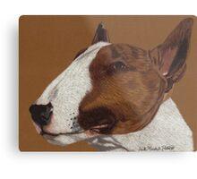 Bull Terrier Vignette Metal Print