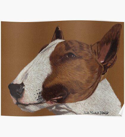 Bull Terrier Vignette Poster