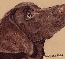 Labrador Retriever Vignette by Anita Meistrell Putman