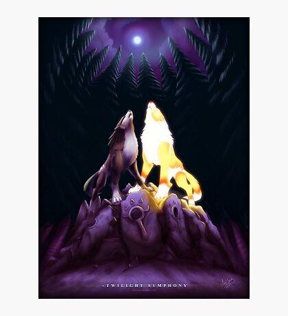 Twilight Symphony Photographic Print
