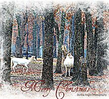 christmas by Donna Anglin Husband