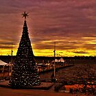 Christmas Tree at National Harbor by Eileen Brymer