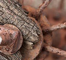 Rusted Wheel by Dan Lauf