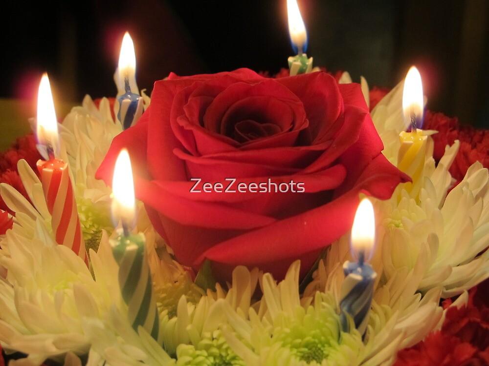 Happy Birthday to You by ZeeZeeshots