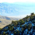 Snow Capped and Desert Sand All in One by HeavenOnEarth