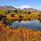 Colorado in September   by Pamela Hubbard