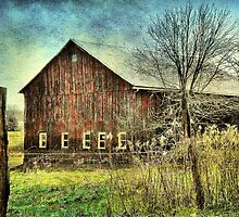 Color Me Distressed by Donnie Voelker