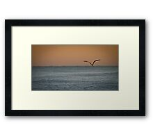 Flying into the Light Framed Print