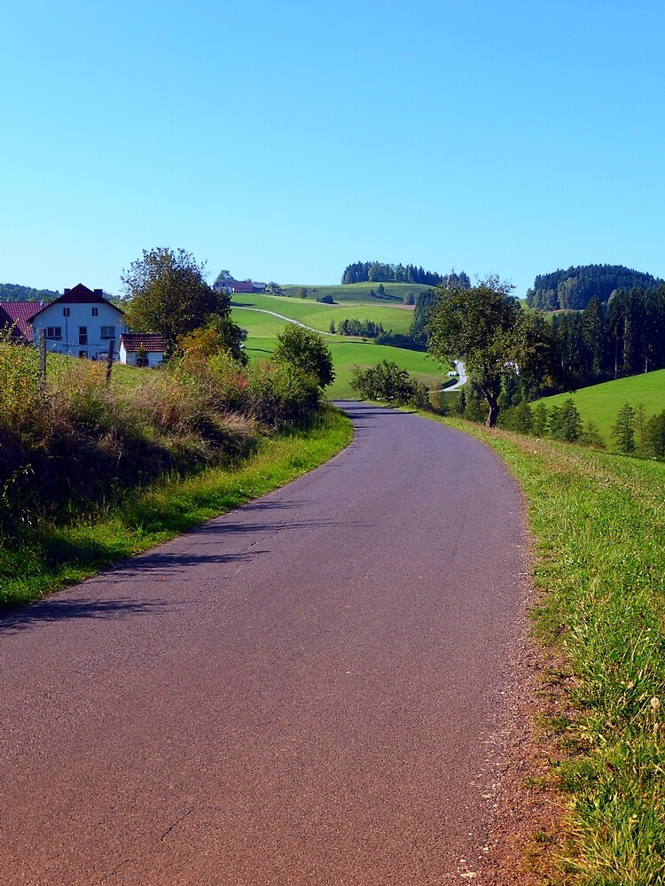 Country road with scenery II | landscape photography by Patrick Jobst