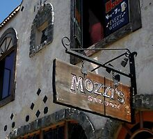 """ Mozzi's Saloon "" by waddleudo"