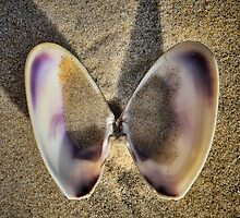Big ears by Murray Swift