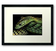 Green Mamba Framed Print