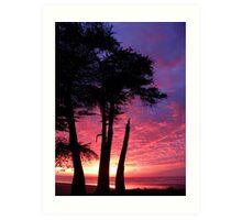 Cypress Sunset Art Print