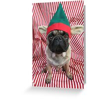 Red Puggy Pixie Greeting Card
