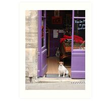 Minding The Shop - Two French Dogs In Boutique Art Print
