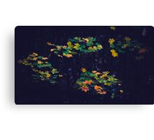 Leaves in a Night Canvas Print
