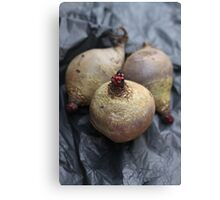 Beetroot Canvas Print