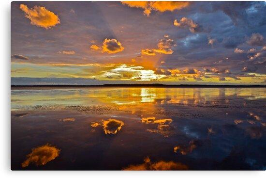 Morning of the Earth..6-12-11. by Warren  Patten
