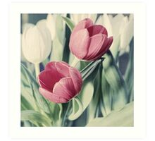 Twin Tulips in Pastel Pink Art Print