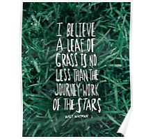 Whitman: Leaf of Grass Poster