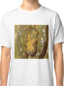 Green Tree Python - Australia Classic T-Shirt
