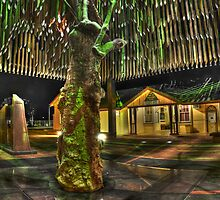 Tree of Knowledge by Steven Shadbolt