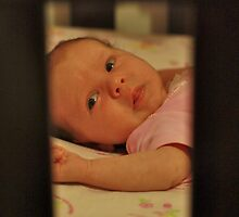 through the cot by jane walsh