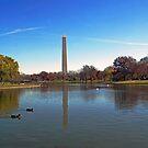 The Washington Monument by cherylc1