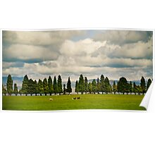 Little Trees Big Skies Poster