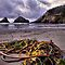 Left Behind ~ Heceta Head Lighthouse ~ by Charles &amp; Patricia   Harkins ~ Picture Oregon