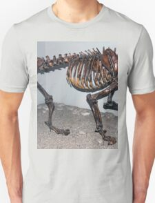 Special Sabre-Toothed Tiger T-Shirt