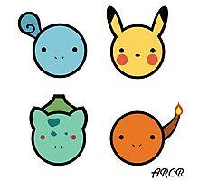 Cute Starter Pokemon Photographic Print