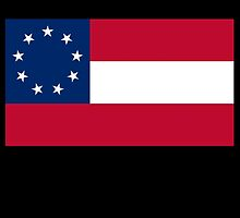 Stars & Bars, USA, America, First American National Flag, 9 stars, 1861 by TOM HILL - Designer