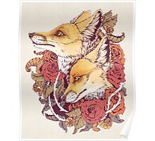 Red Fox Bloom Poster